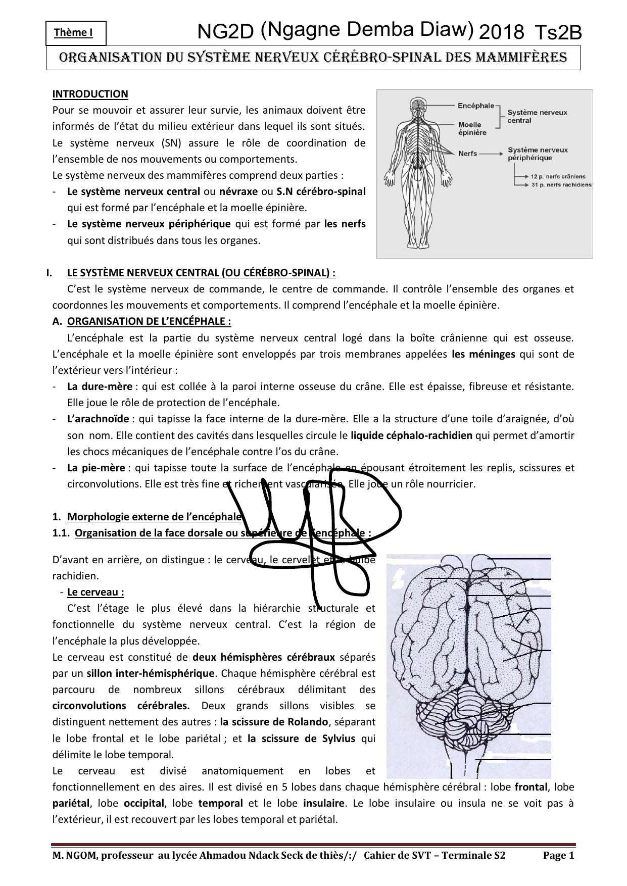 epreuve corrige bac transmission synaptique et toxine)