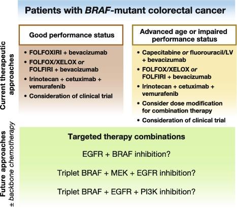 cancer colorectal braf