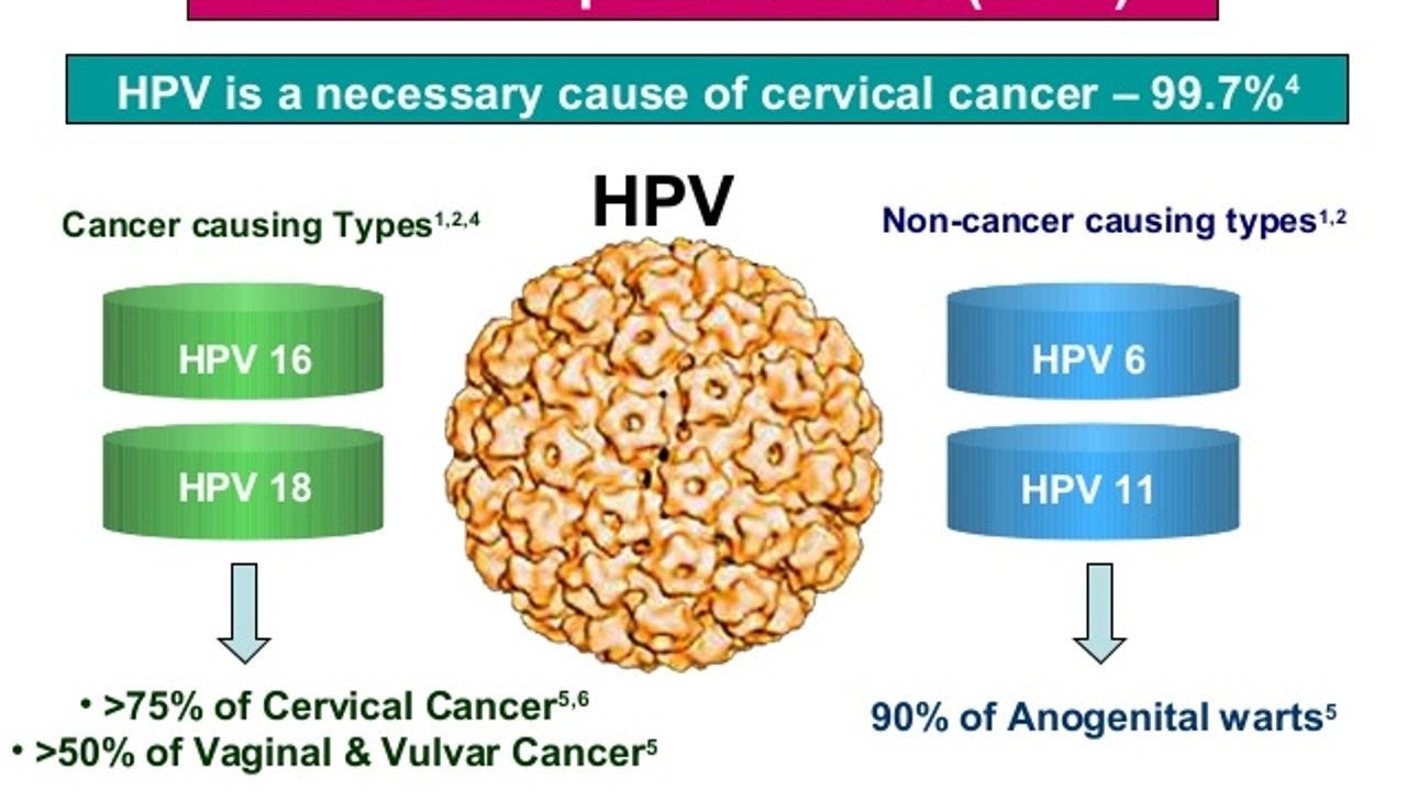 hpv cause of cervical cancer