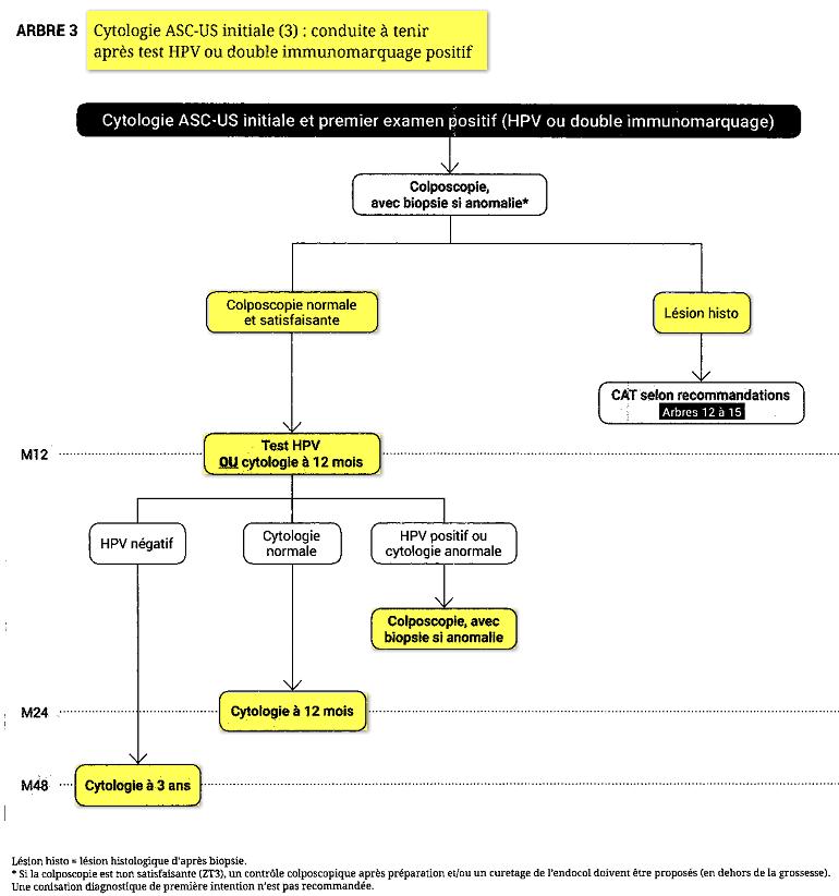 anomalie frottis papillomavirus cancer bucal org