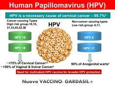 anti papillomavirus vaccino