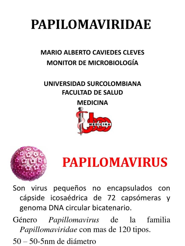 HPV evenimente-corporate.ro - Documents