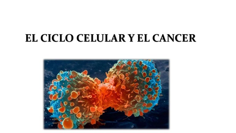 cancerul se transmite genetic)