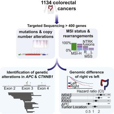 cancer genetic number)
