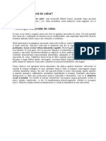 papilloma virus vaccino donne hpv and uterine cancer