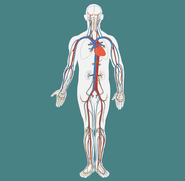 cancerul limfatic cauze