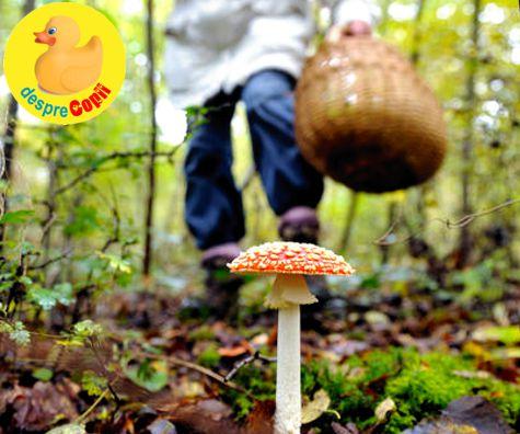 ciuperci jumbo test anonimi hiv
