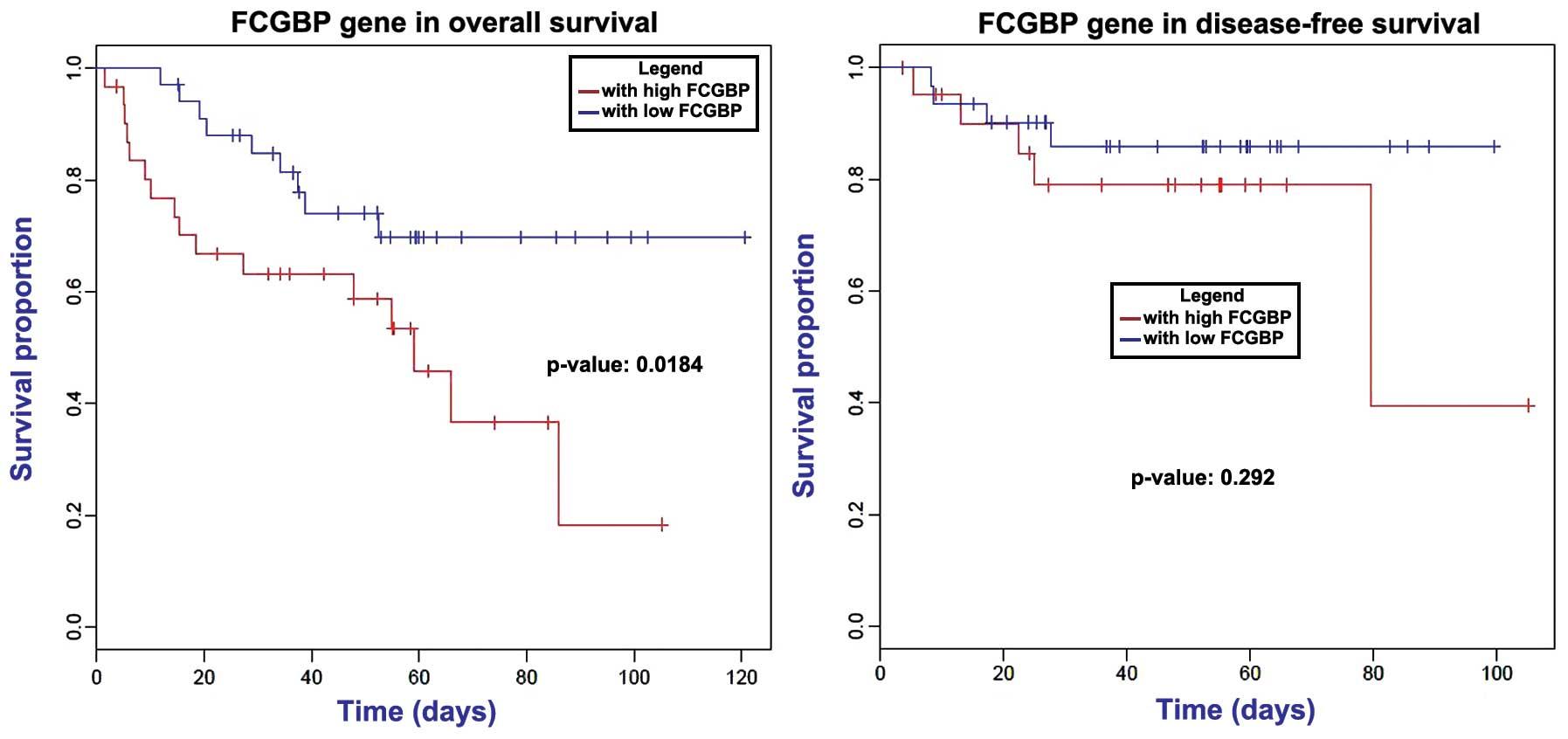 colon cancer metastatic prognosis