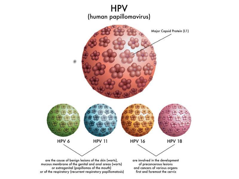 virus hpv uomo diagnosi