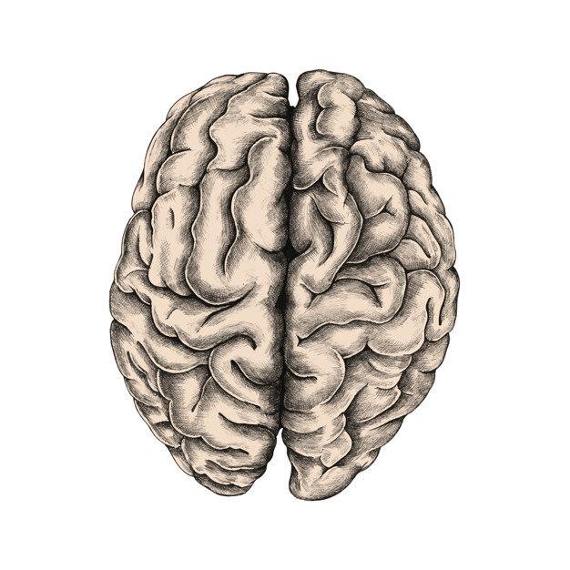 cancer cerebral prognostico