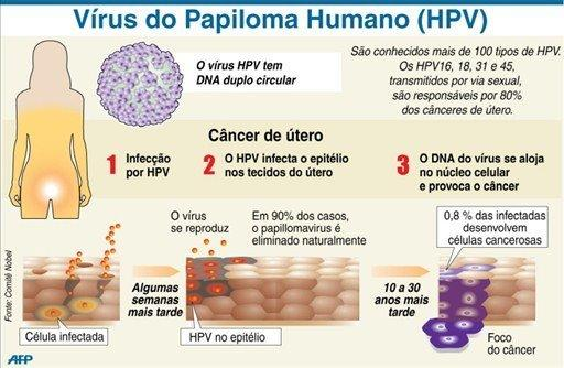 virus hpv e cancer de colo de utero