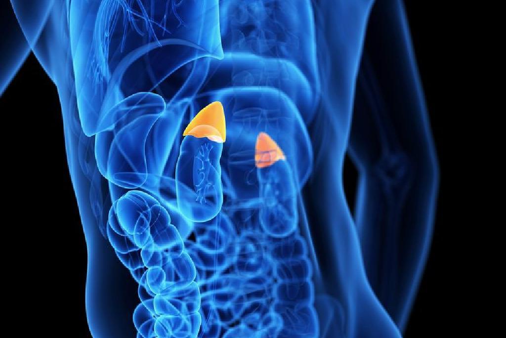 Cancerul pulmonar: cel mai mortal tip de cancer din lume | 4vip.ro