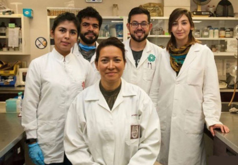 hpv drug research