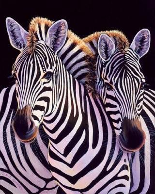 neuroendocrine cancer zebra