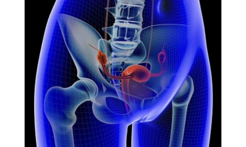 endometrial cancer brachytherapy)