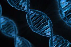 hpv virus behandlung homoopathisch