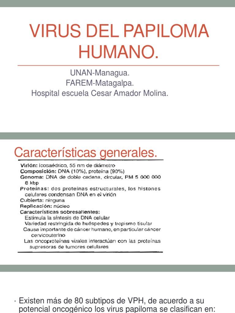 virus papiloma humano caracteristica