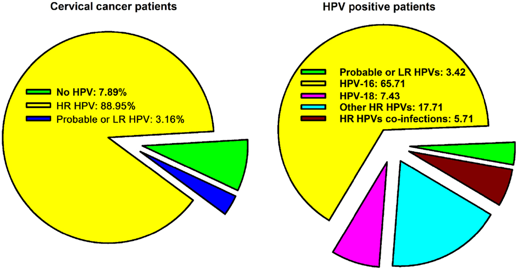 human papillomavirus vaccine in saudi arabia