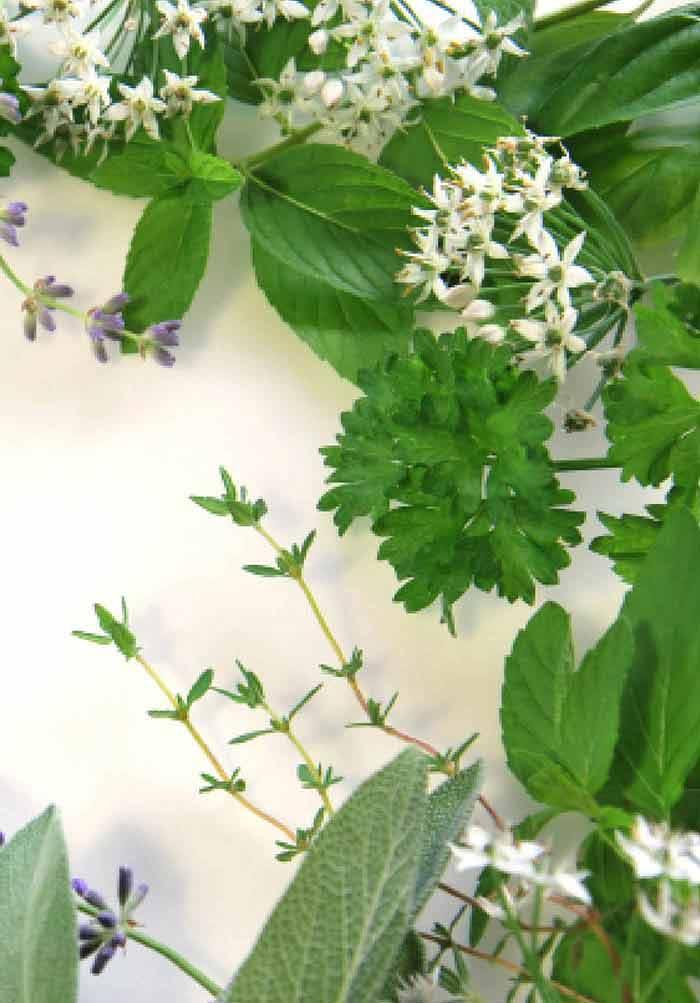 helminth natural treatment