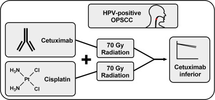 hpv positive head and neck cancer cetuximab cervical cancer lymph node spread