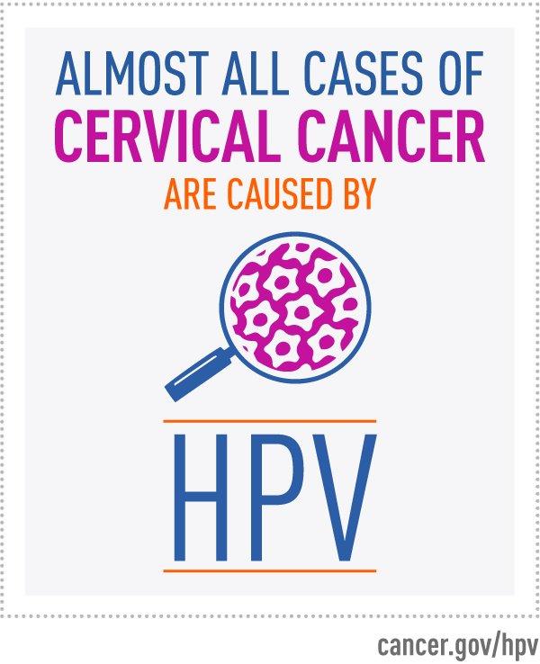 human papillomavirus causes in urdu)
