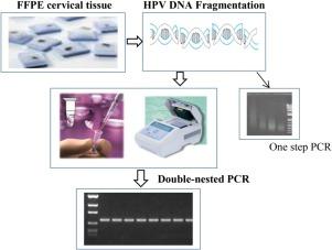 human papillomavirus dna test)