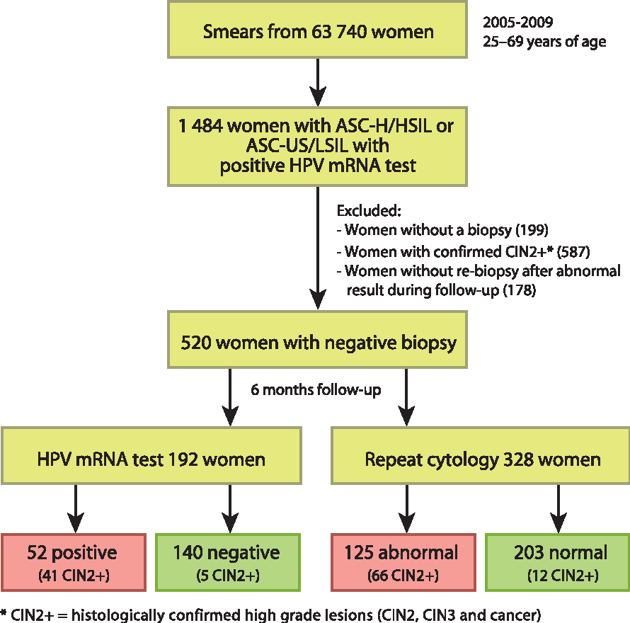 human papillomavirus e6/e7 mrna