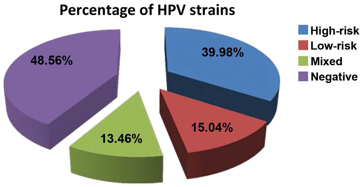 human papillomavirus strains