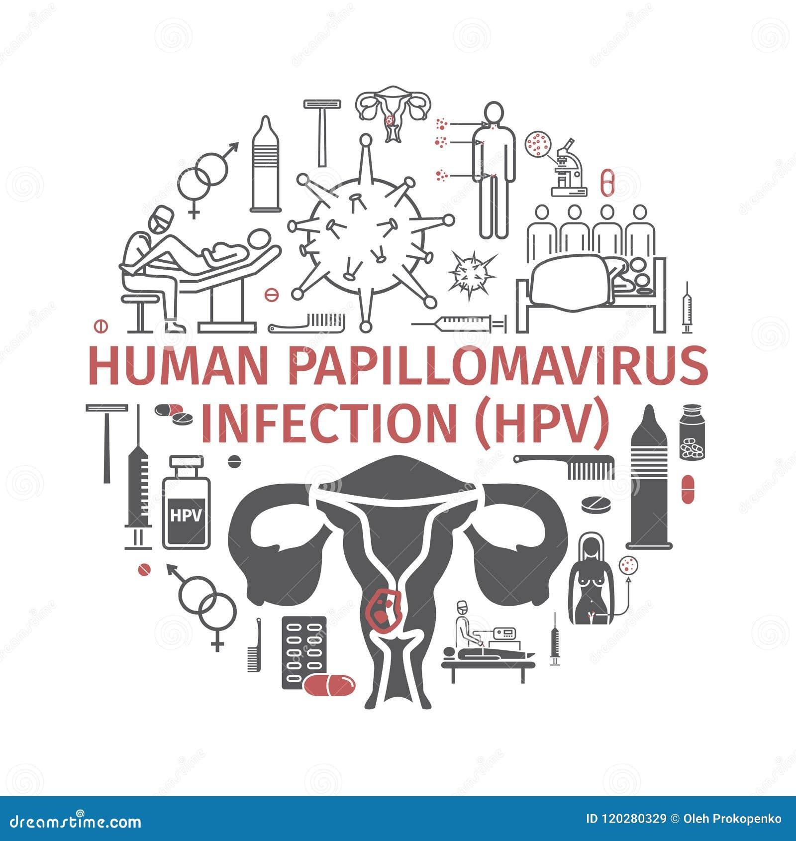 papillomavirus bovin traitement