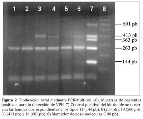 papillomavirus hpv positivo