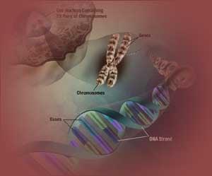 tipuri cancer genetic