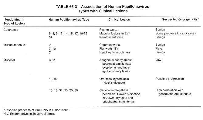 hpv non cancer strain tratament raceala copii 1 an