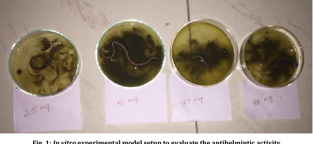 anthelmintic activity of nerium oleander
