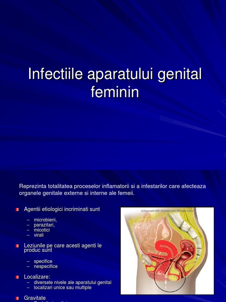 schistosomiasis katayama fever lesion hpv langue