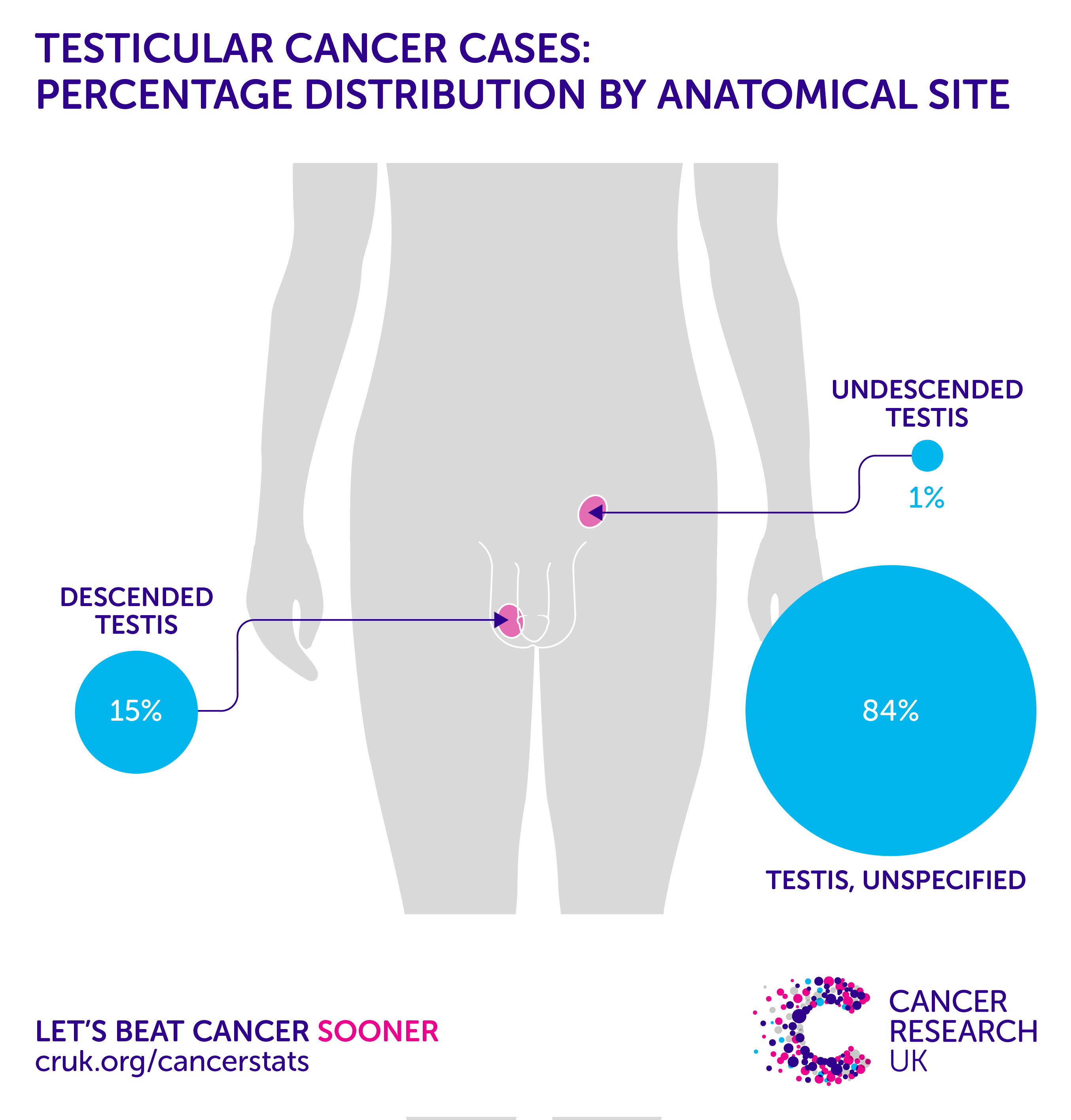 testicular cancer quick facts)