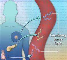 test sanguin pour papillomavirus