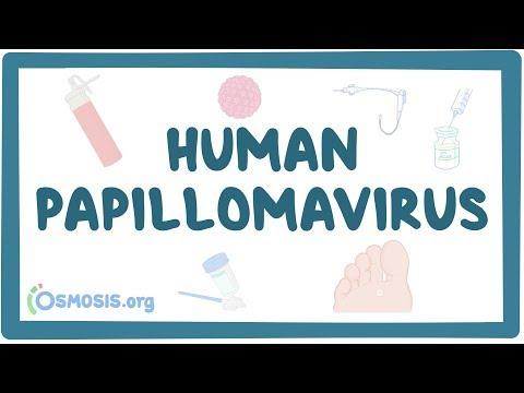 farmaci per papilloma virus uomo)