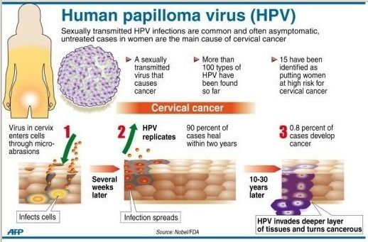 hpv virus on pap smear)