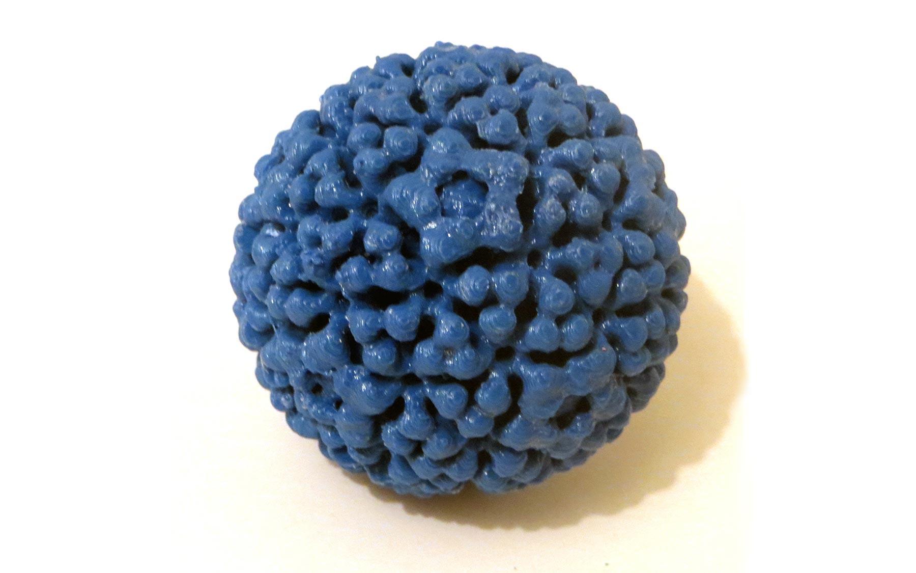 papillomavirus virus