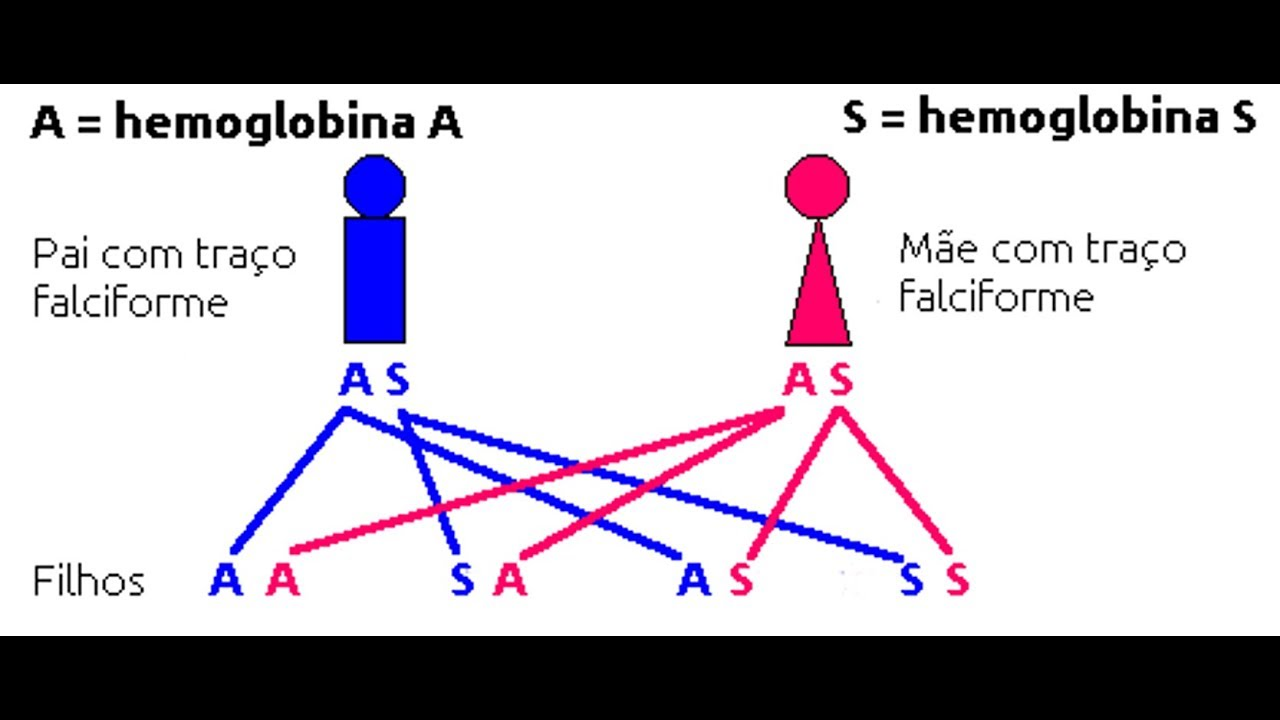 anemie genetica