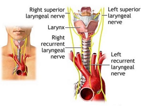 cancer laringe tratament