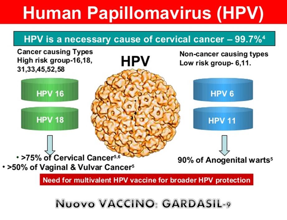 papilloma virus vaccino toscana)