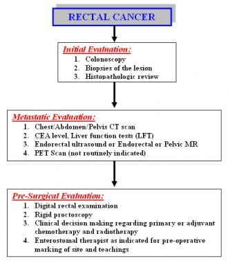 3-multimodal-treatment-of-rectal-cancer-choosing-a-therapy-protocol.pdf
