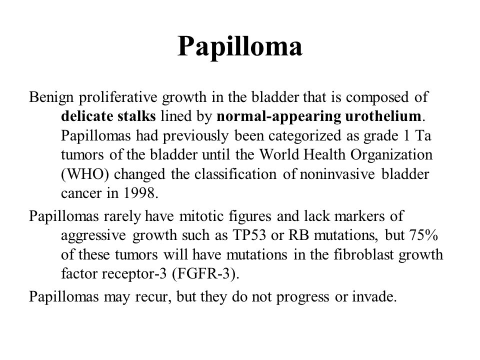 papilloma bladder cancer)