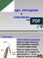 cancerul veziculei biliare)
