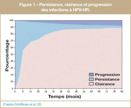pourcentage femme papillomavirus