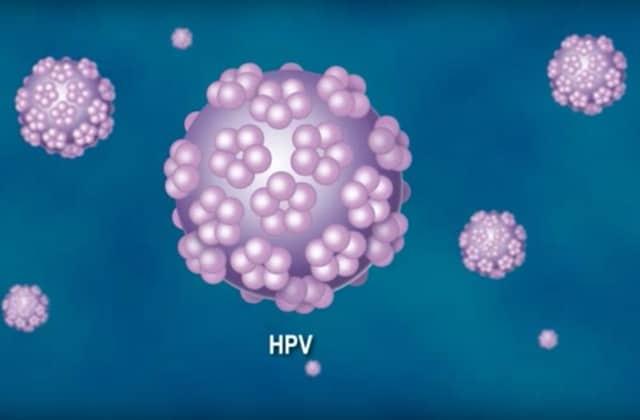 papillomavirus pour lhomme)
