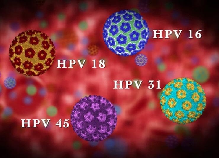 virus del papiloma humano tipo 18