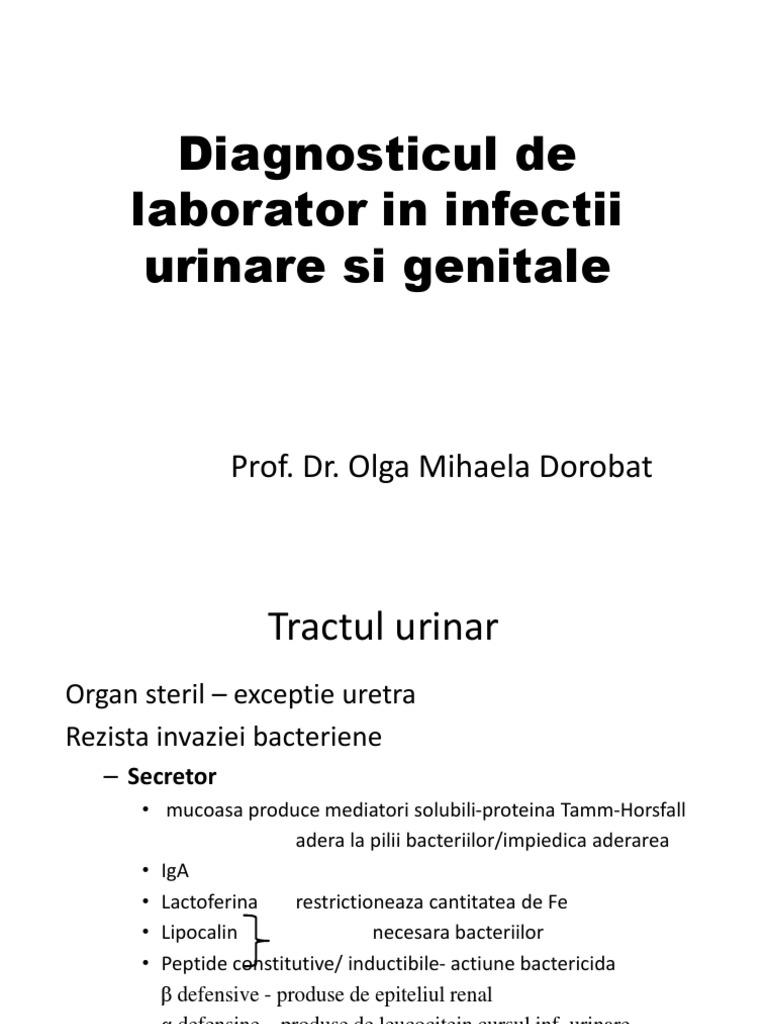 O abordare holistică a infecţiilor de tract urinar la femei