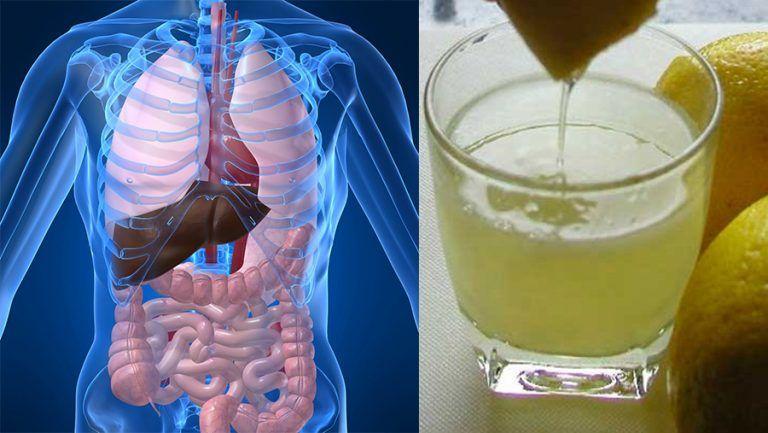 detoxifierea ficatului si colonului